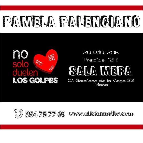 Cartel Pamela Sala Mera